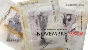 Novembre Vaca 2013