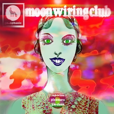 moon wiring club foto 1
