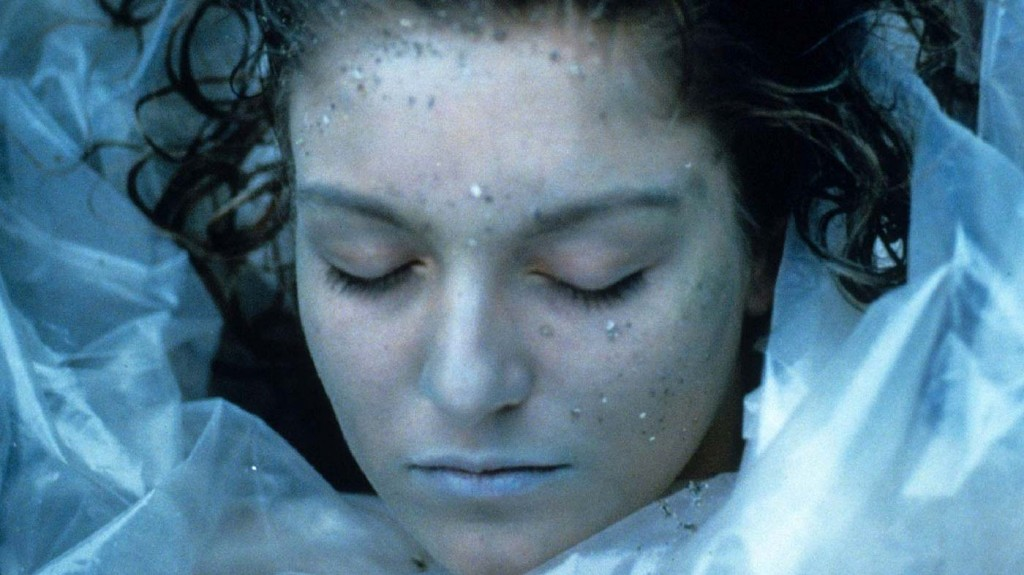 twin-peaks-laura-palmer-critique-series