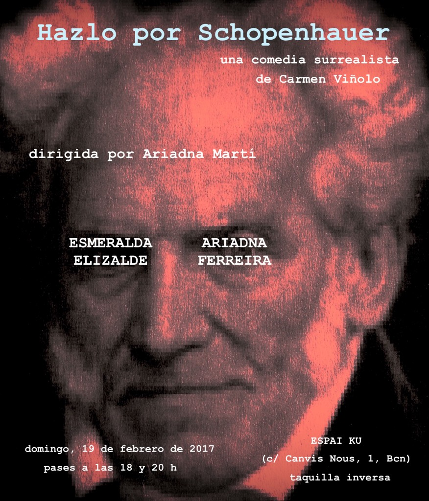 Cartel  Hazlo Schopenhauer