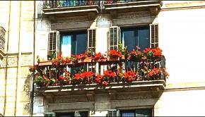 Balcón con flores por Carmen Viñolo